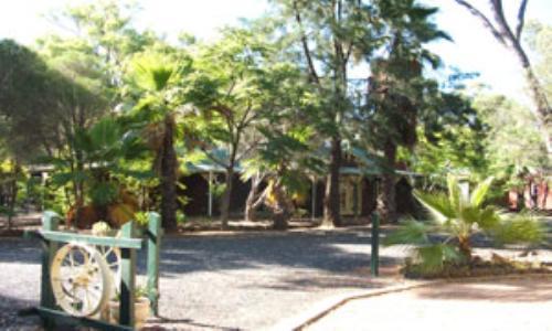 Private Business For Sale Gilgandra 2827 NSW