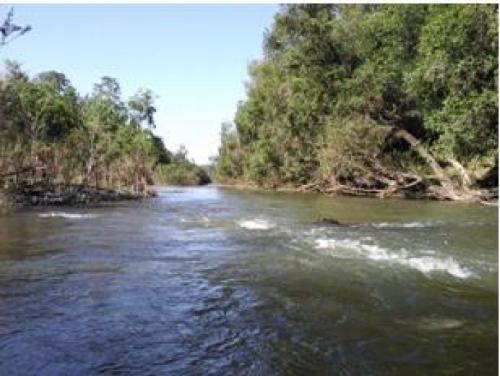 Property For Sold Maryborough 4650 QLD 1