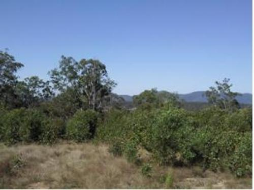 Property For Sold Maryborough 4650 QLD 3