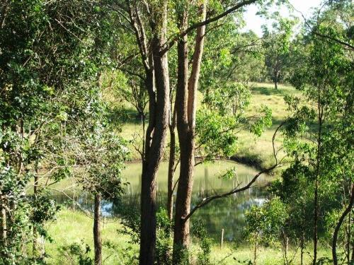 Property For Sale Toowoomba 4350 QLD 3