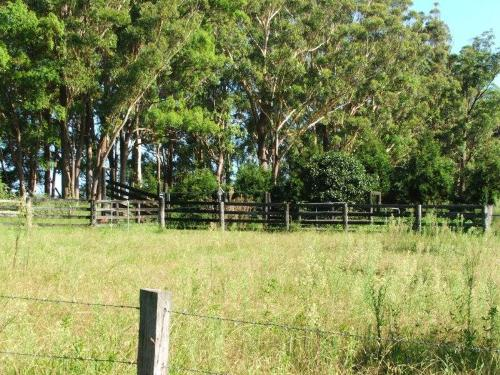 Property For Sale Toowoomba 4350 QLD 10
