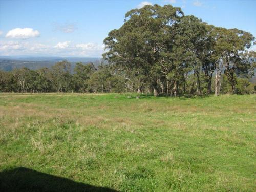 Property For Sale Armidale 2350 NSW 7