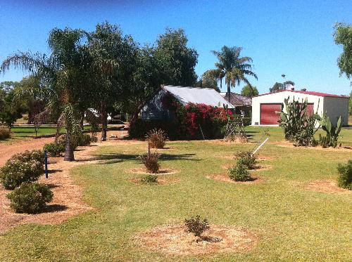 Property For Sold Combara 2829 NSW 3