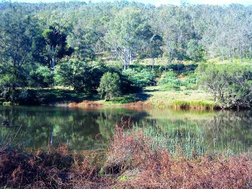 Property For Sale Tabulam 2469 NSW 1