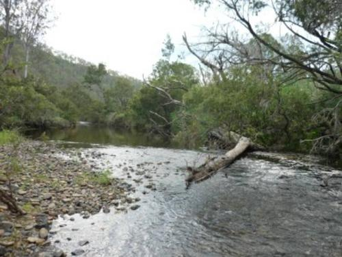 Property For Sale Tabulam 2469 NSW 4