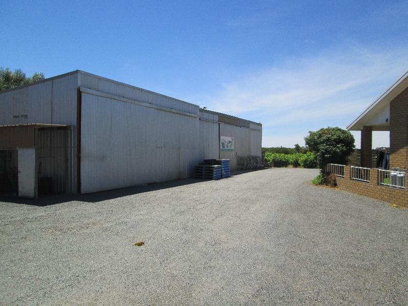 Property For Sale Buronga 2739 NSW 8