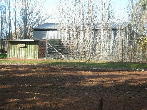 Property For Sold Leeton 2705 NSW 10