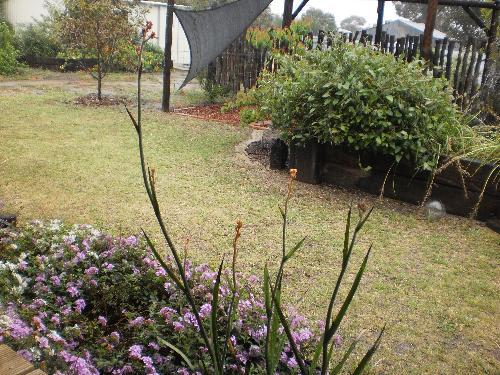 Property For Sale Pingelly 6308 WA 6