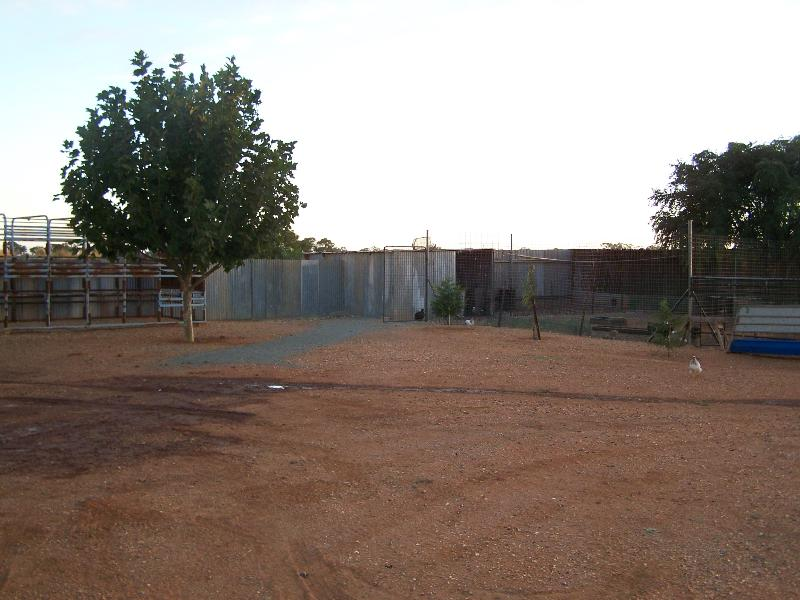 Property For Sold Tottenham 2873 NSW 10