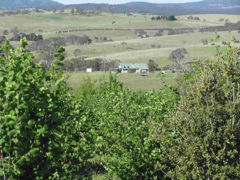 Property For Sale Oconnell 2795 NSW 6