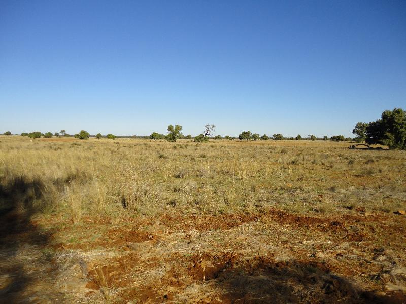 Property For Sale Nyngan 2825 NSW 3