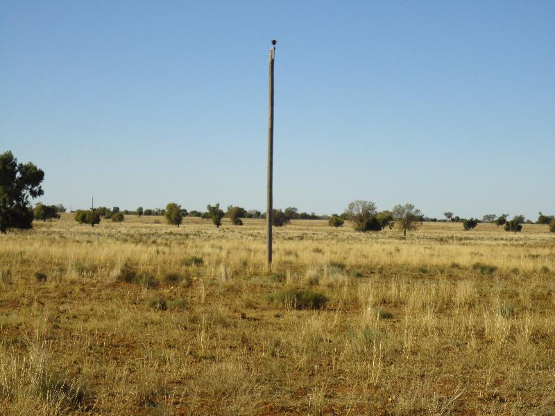 Property For Sale Nyngan 2825 NSW 6