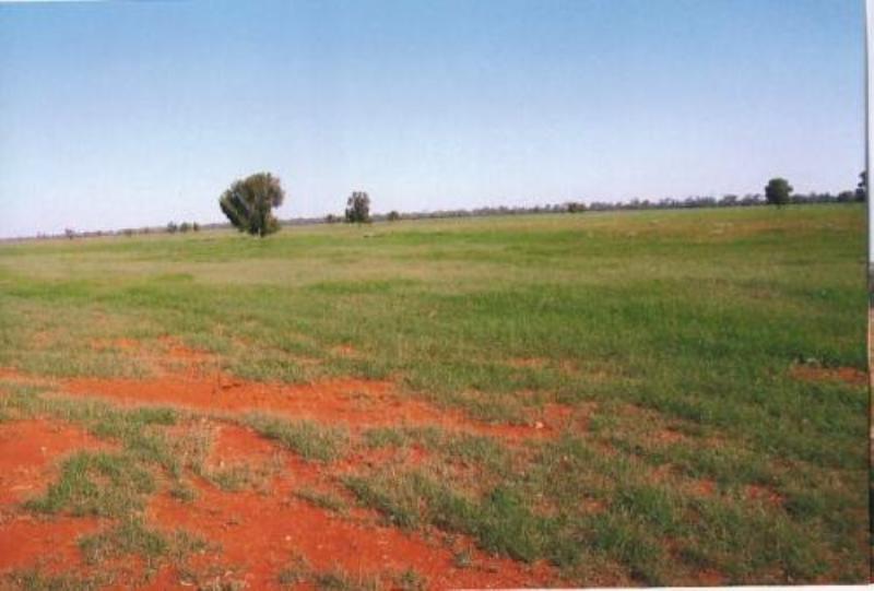 Property For Sale Nyngan 2825 NSW 7