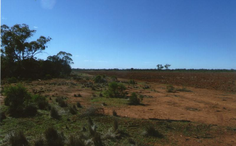 Property For Sold Cobar 2835 NSW 7