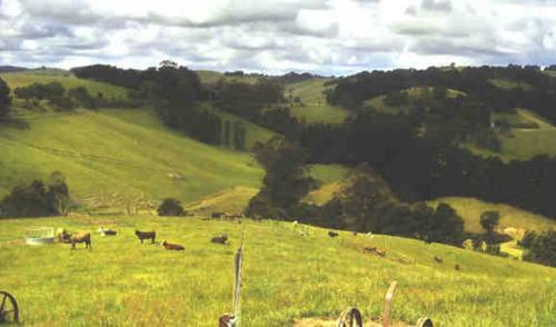 Property For Sold Stony Creek 3957 VIC 10