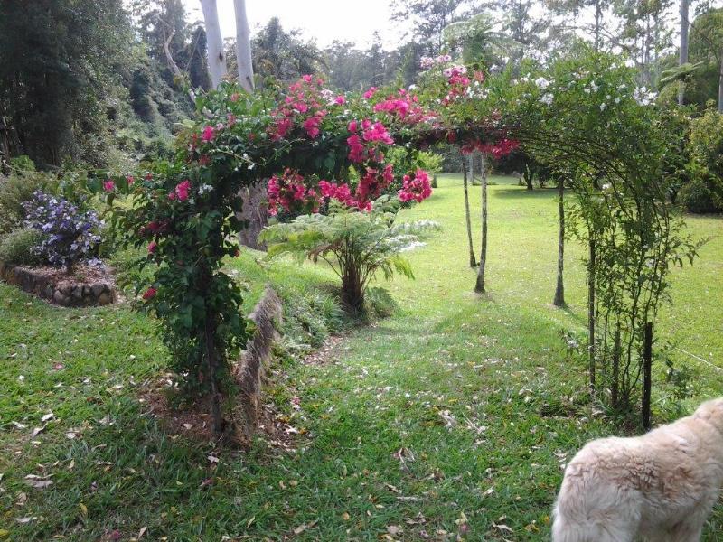Property For Sale 693 Kalang Rd Bellingen NSW 2454 18