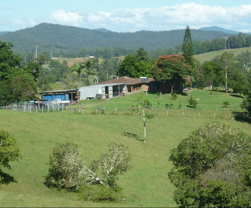 Property For Sold 123 Williams Hill Road Yarranbella NSW 2447 1