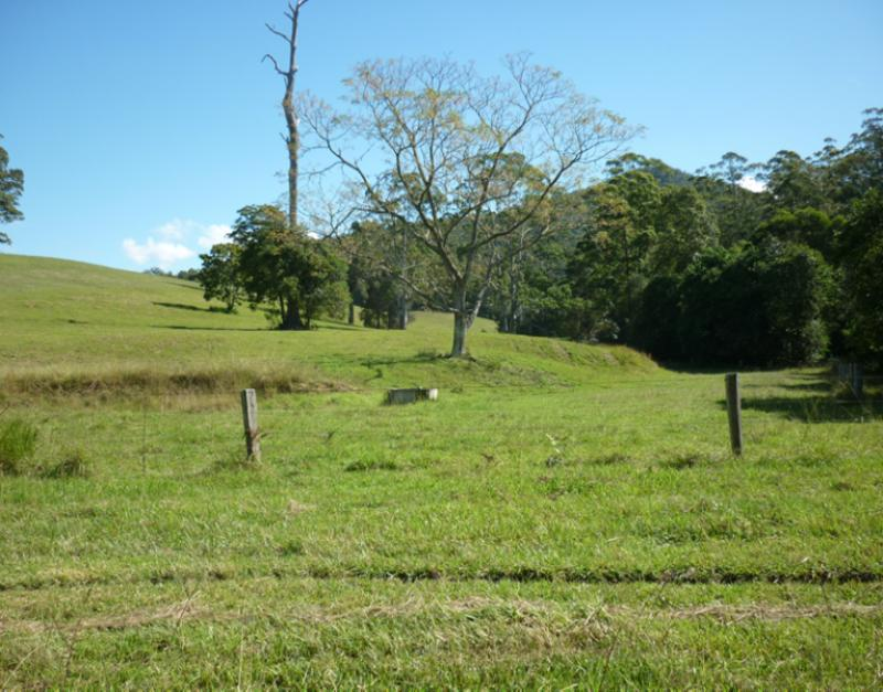 Property For Sold 123 Williams Hill Road Yarranbella NSW 2447 10