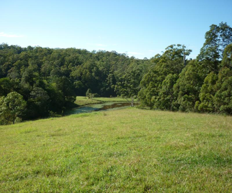 Property For Sold 123 Williams Hill Road Yarranbella NSW 2447 11