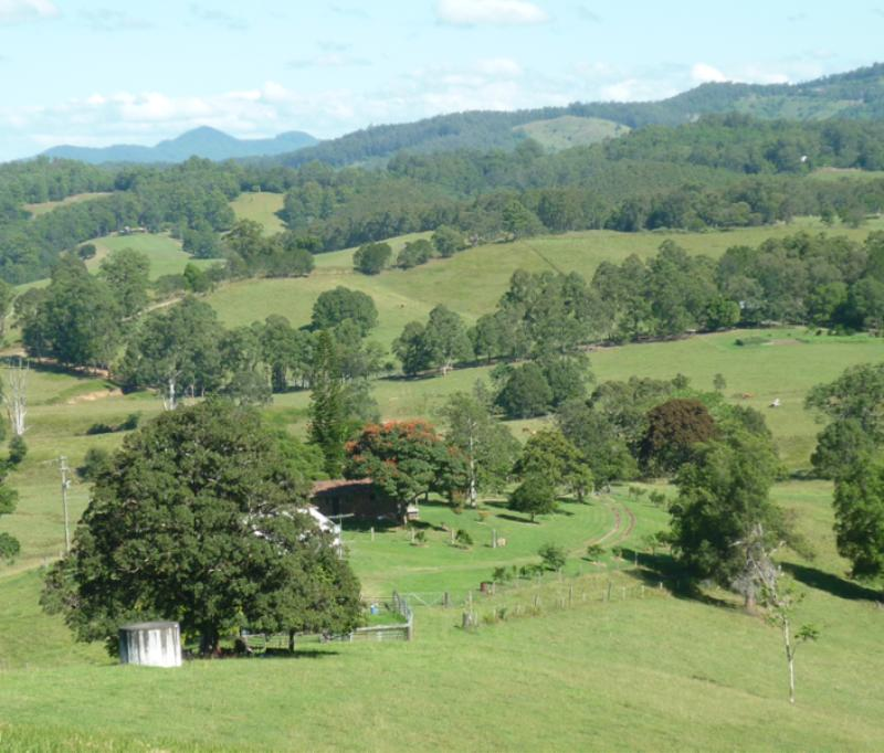 Property For Sold 123 Williams Hill Road Yarranbella NSW 2447 12