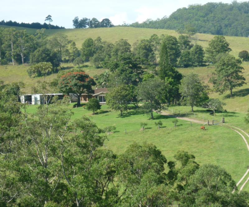 Property For Sold 123 Williams Hill Road Yarranbella NSW 2447 16