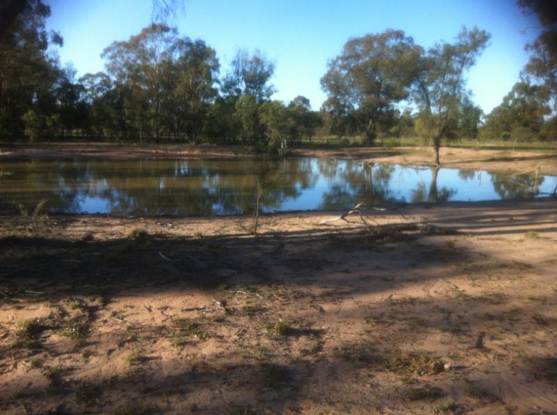 Property For Sold 2151 Gwabegar Road Cuttabri NSW 2388 5