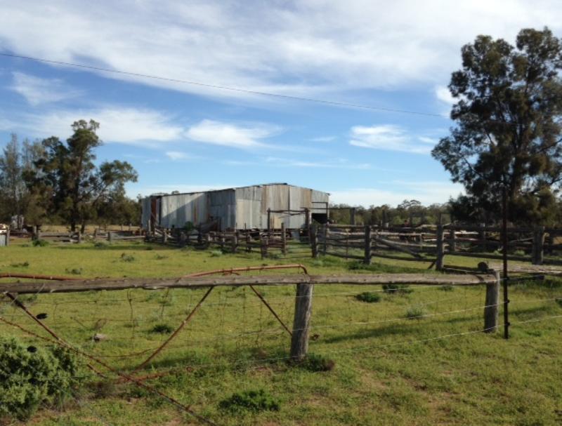 Property For Sold 2151 Gwabegar Road Cuttabri NSW 2388 9