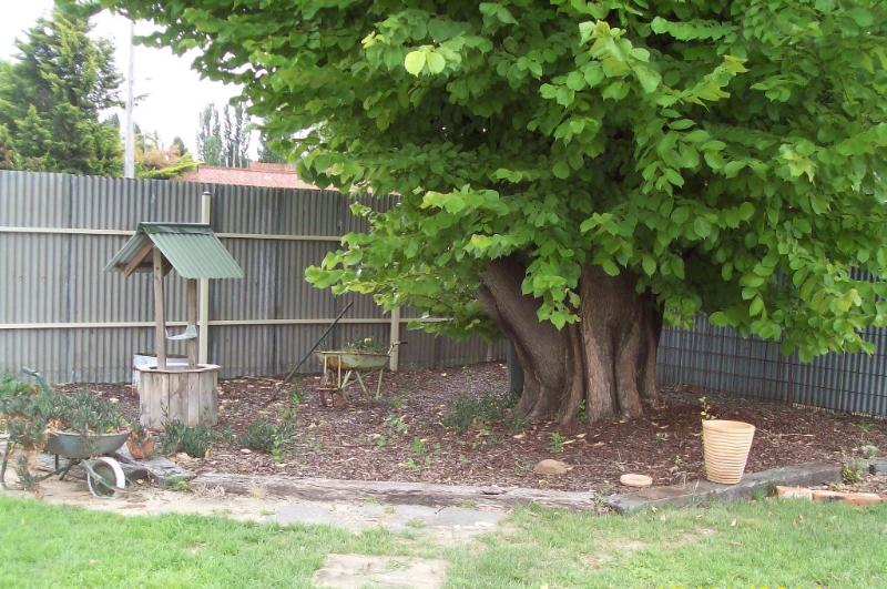 Property For Sold Mandurama 2792 NSW 8