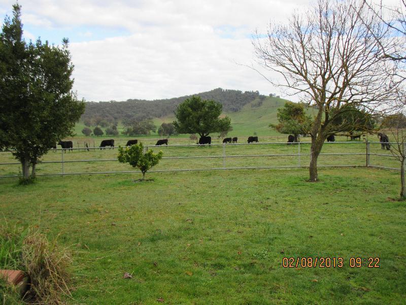 Property For Sale 12 Alpine Way Khancoban NSW 2642 3