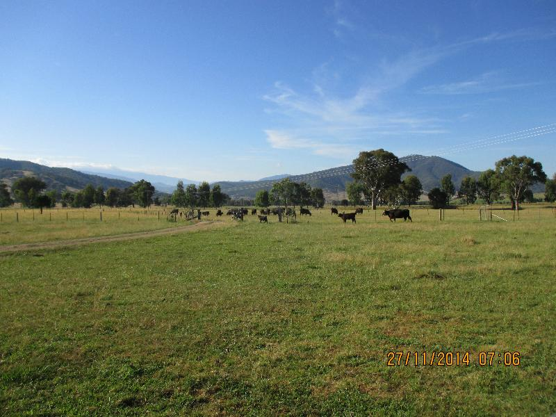 Property For Sale 12 Alpine Way Khancoban NSW 2642 6