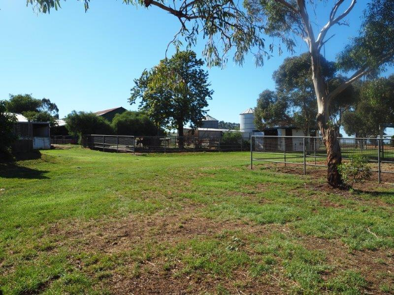 Property For Sold Canowindra 2804 NSW 8