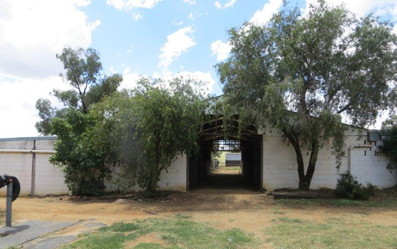 Property For Sold Canowindra 2804 NSW 16