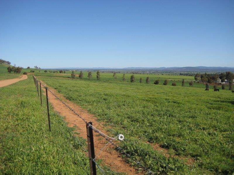 Property For Sold Canowindra 2804 NSW 19