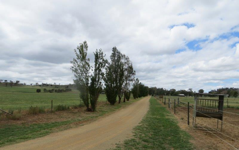 Property For Sold Canowindra 2804 NSW 20
