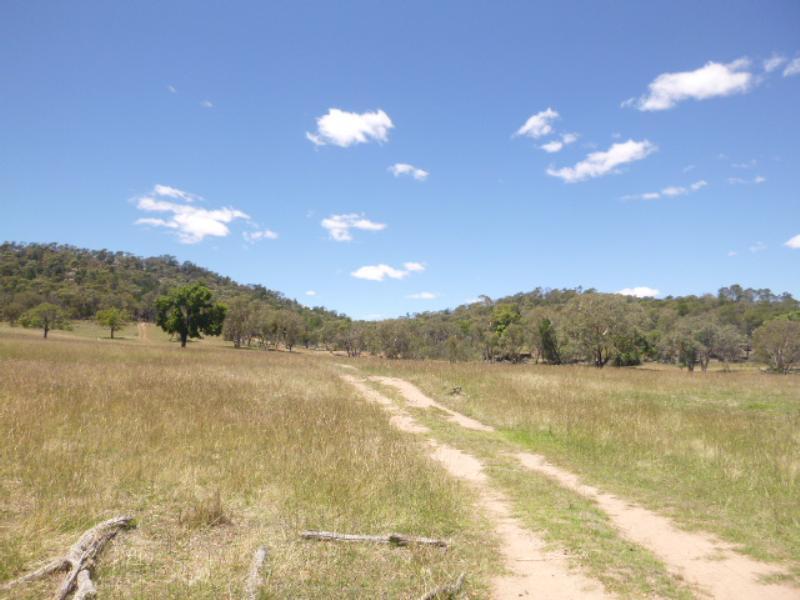 Property For Sold Lot/99 Wanera Lane Eugowra NSW 2806 1