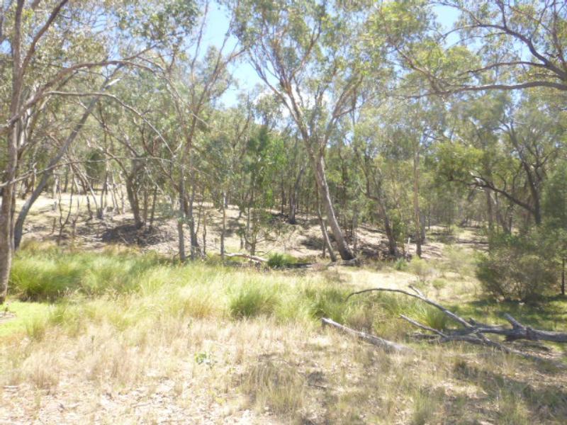 Property For Sold Lot/99 Wanera Lane Eugowra NSW 2806 10