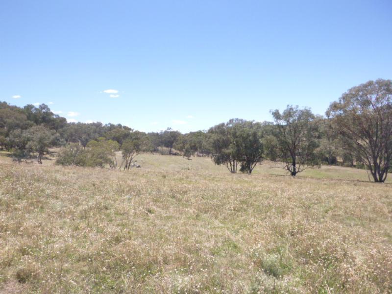 Property For Sold Lot/99 Wanera Lane Eugowra NSW 2806 11