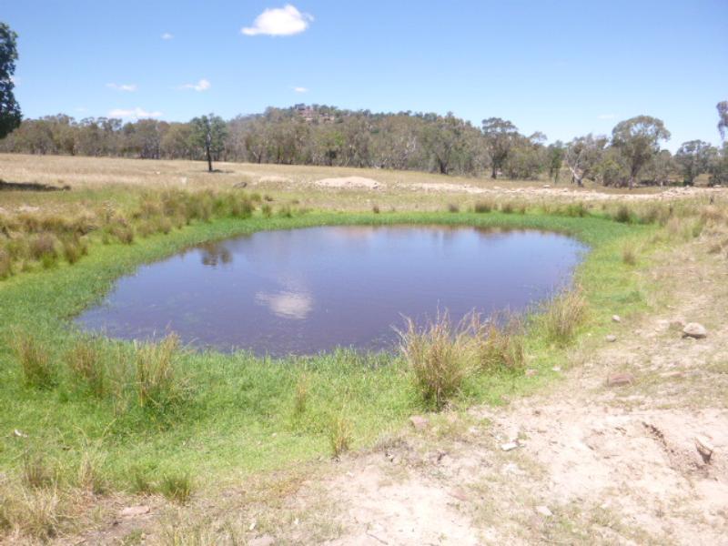 Property For Sold Lot/99 Wanera Lane Eugowra NSW 2806 12