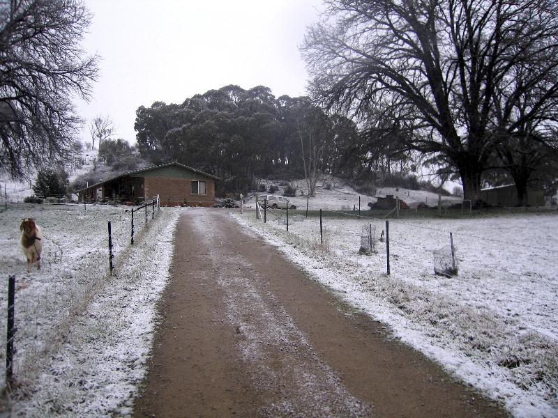Property For Sold 45 Mate Street Tumbarumba NSW 2653 16