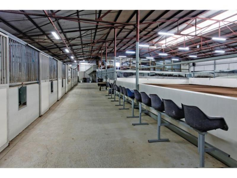 Private Business For Sale Kyneton 3444 VIC 10