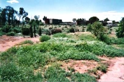 Property For Sale Quorn 5433 SA 5
