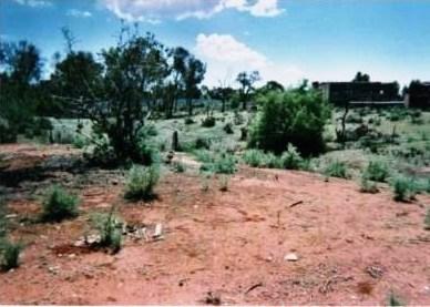 Property For Sale Quorn 5433 SA 8
