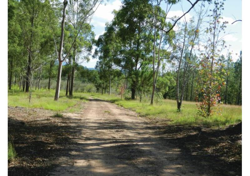 Property For Sold Ewingar 2469 NSW 6