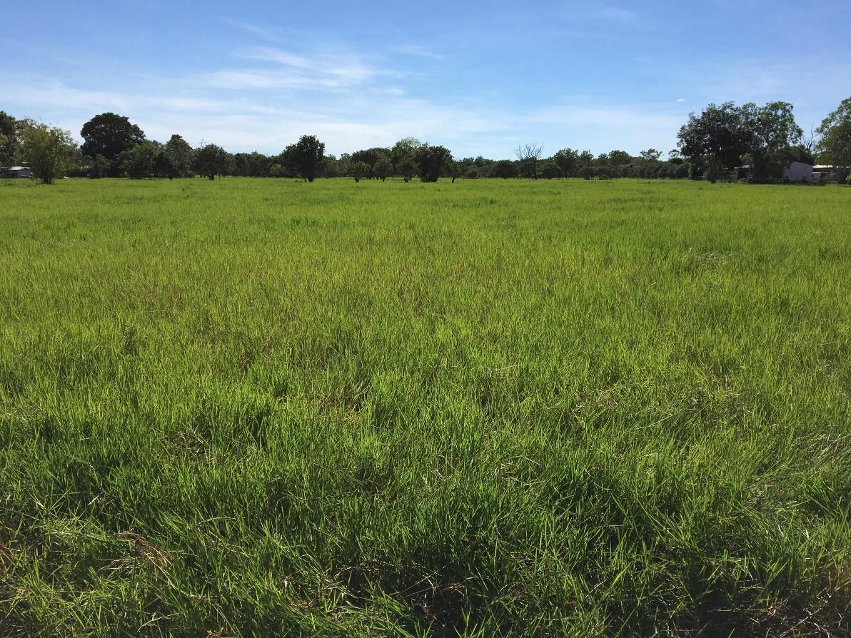 Property For Sale Lot 5111/79 Freds Pass Road Humpty Doo NT 0836 4