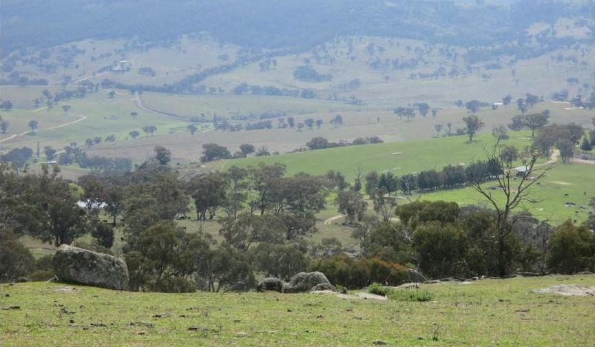 2027 Ophir Rd Rock Forest NSW 2795