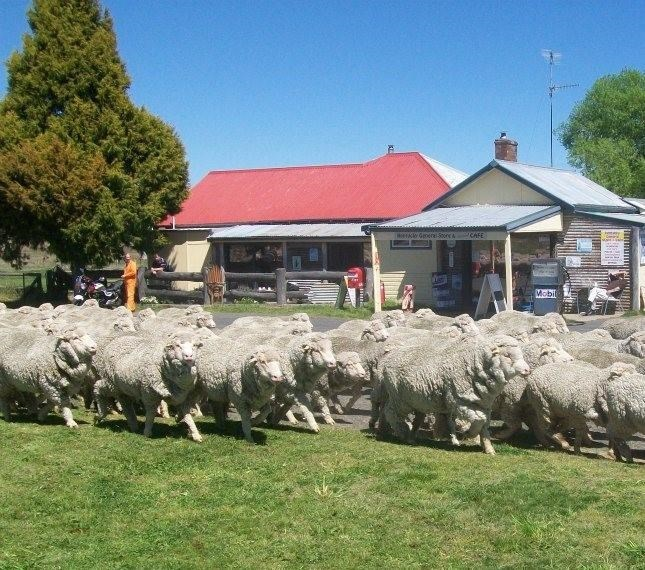 Private Business For Sale 46 Noalimba Ave Armidale NSW 2350