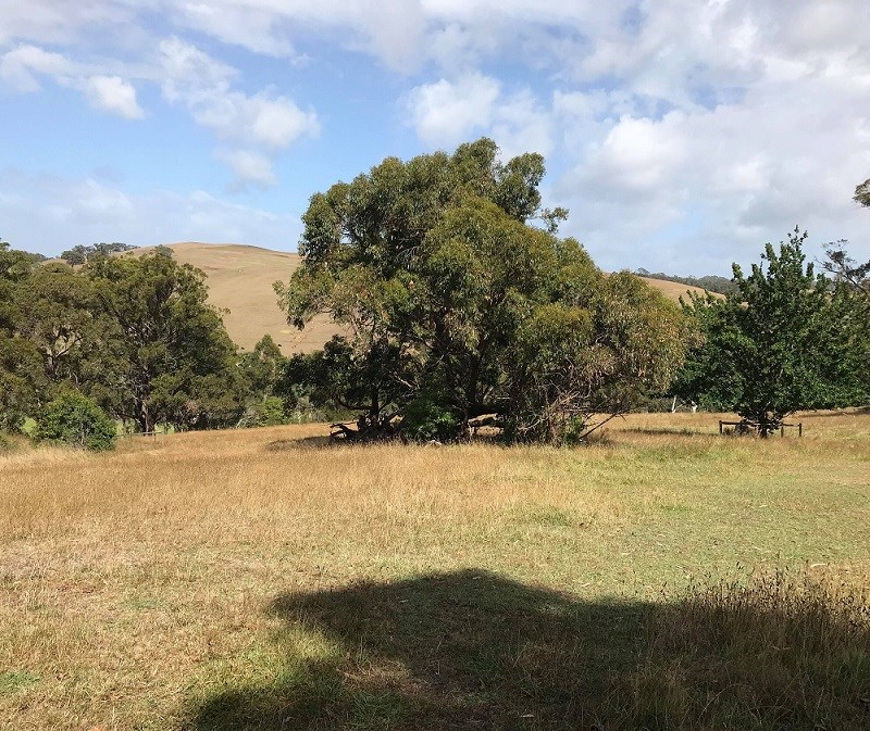 Property For Sold Lot 51c/140 Bolgers Road. Devon North VIC 3971 1