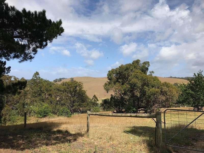 Property For Sold Lot 51c/140 Bolgers Road. Devon North VIC 3971 2