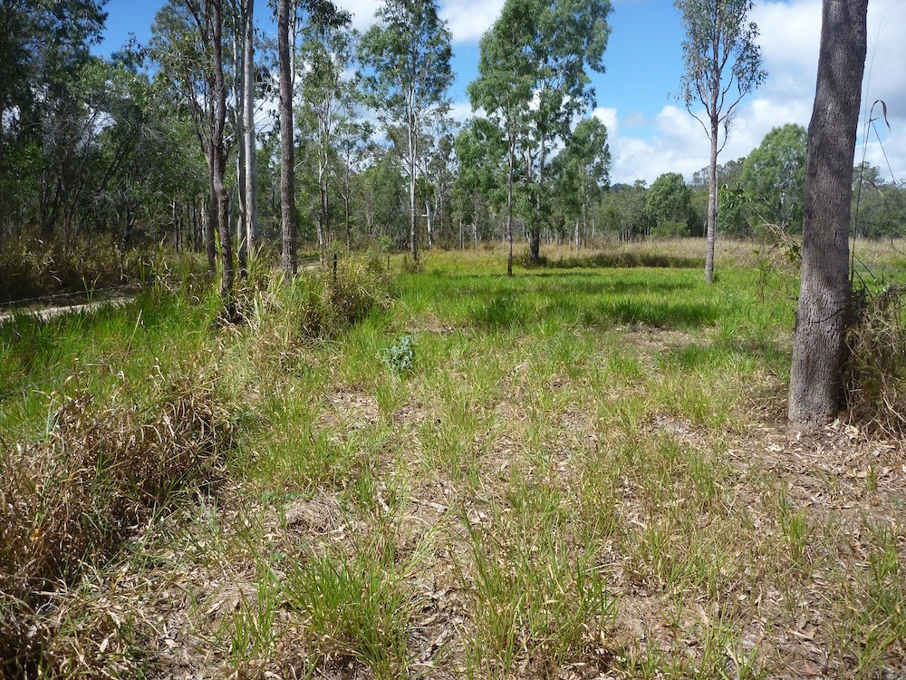 Lot 37 Wetherby Road Mount Molloy QLD 4871