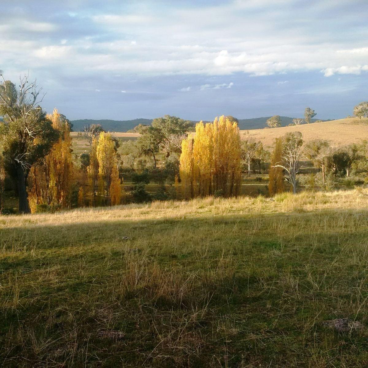 225 Bradene Road Mandurama NSW 2792